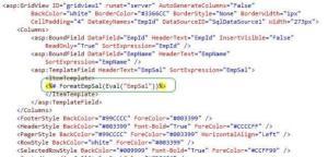 FormatedGridviewCode